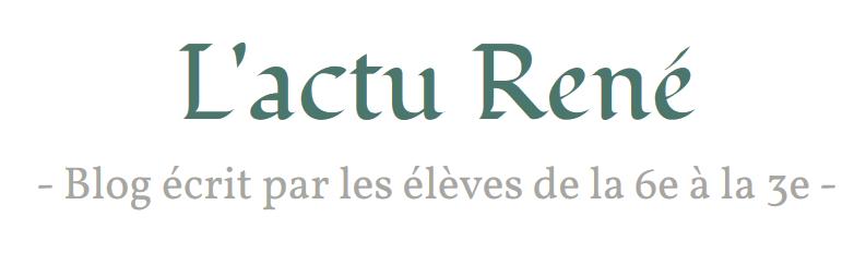 Blog rené.png